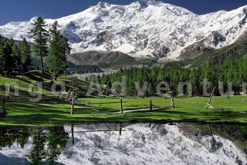 NANGA PARBAT EXPEDITION